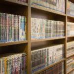 【画像】友達の家の本棚がこんなんだったらどうする