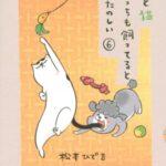 犬と猫どっちも飼ってると毎日たのしい 6巻 【構って欲しくて背伸びする犬くんと素直には寄ってこない猫さま、どっちも可愛い!】